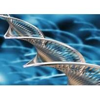 کارشناسی ارشد زیست فناوری دریا