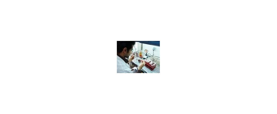 نانوتکنولوژی دارویی