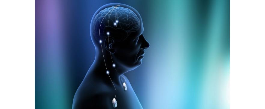 علوم اعصاب
